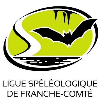 logoligue2013.jpg
